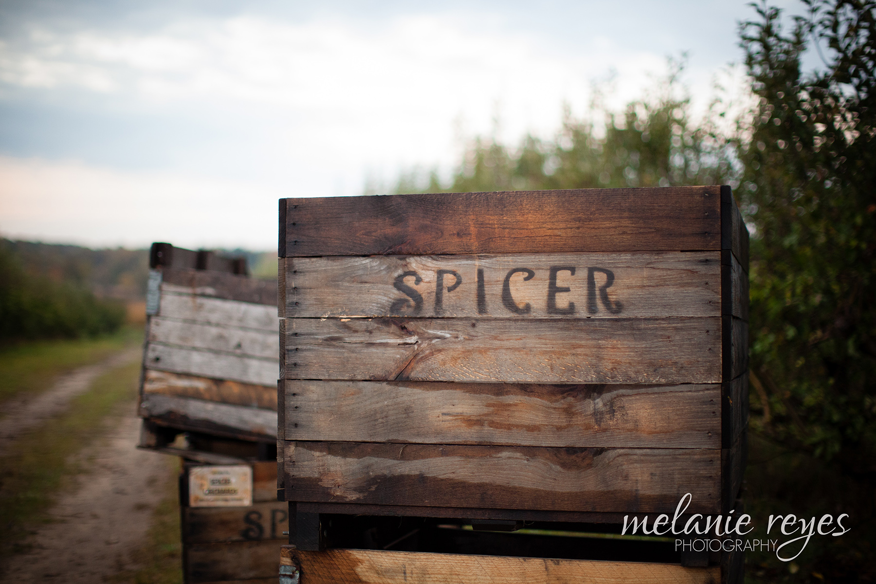 JeffAdrienne_Michigan_Wedding_Photography_Ann_Arbor_Spicers_Orchard_001