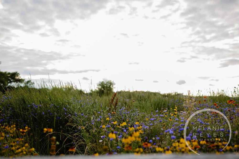 melaniereyesphotography_fruitg_farm_Misty-farm_wedding-4.jpg