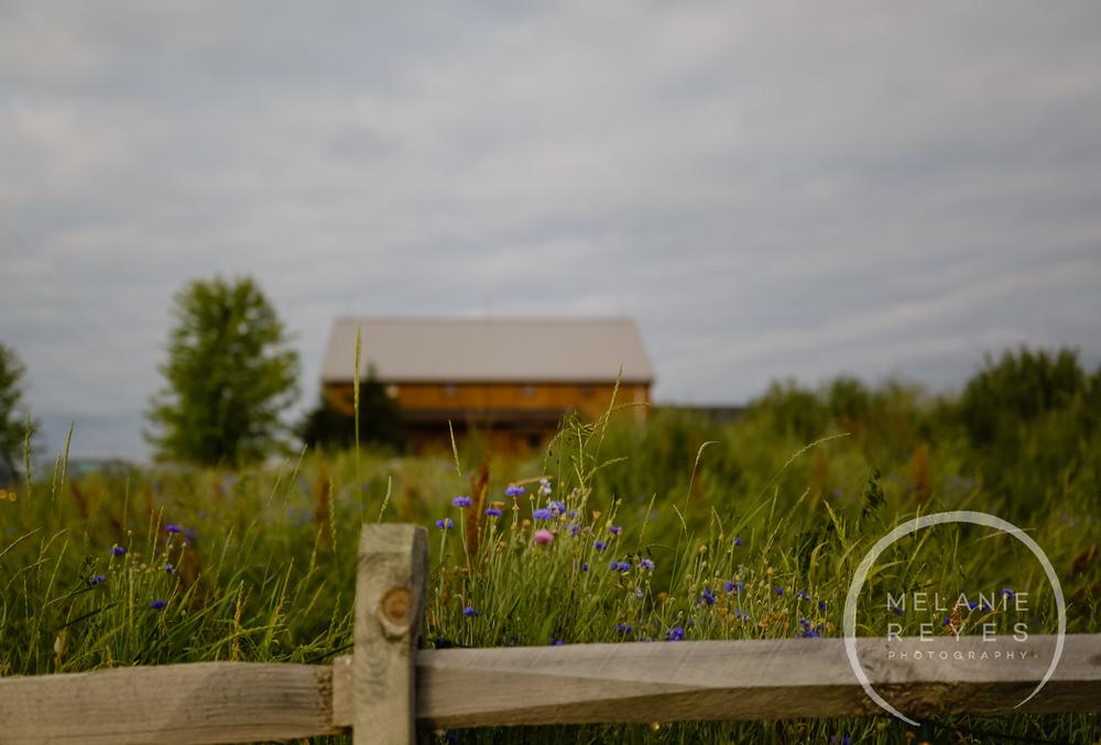 melaniereyesphotography_fruitg_farm_Misty-farm_wedding-10.jpg