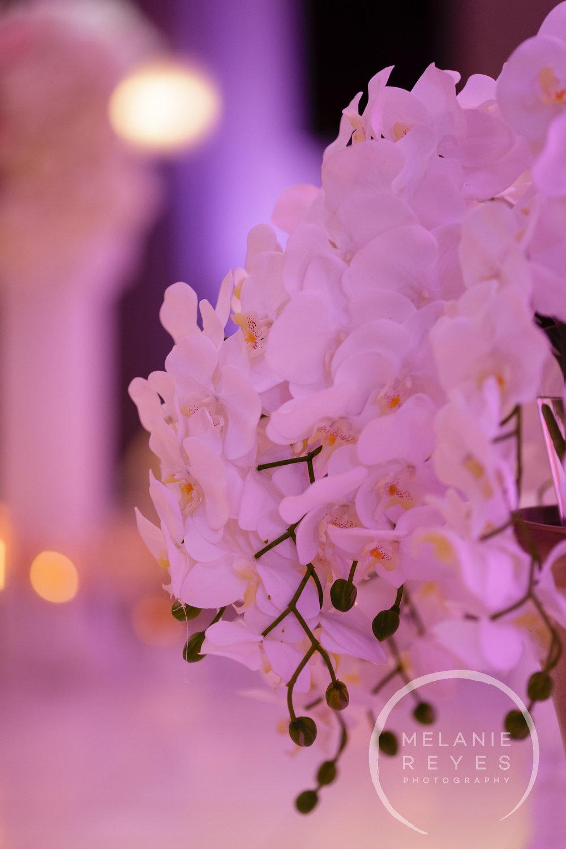 05282016_reception_381.jpg