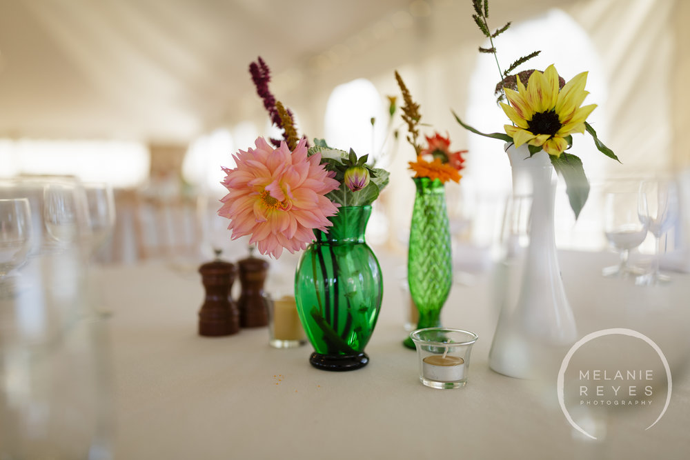 zingermans_cornman_farms_wedding_melanie_reyes_photography_014.JPG