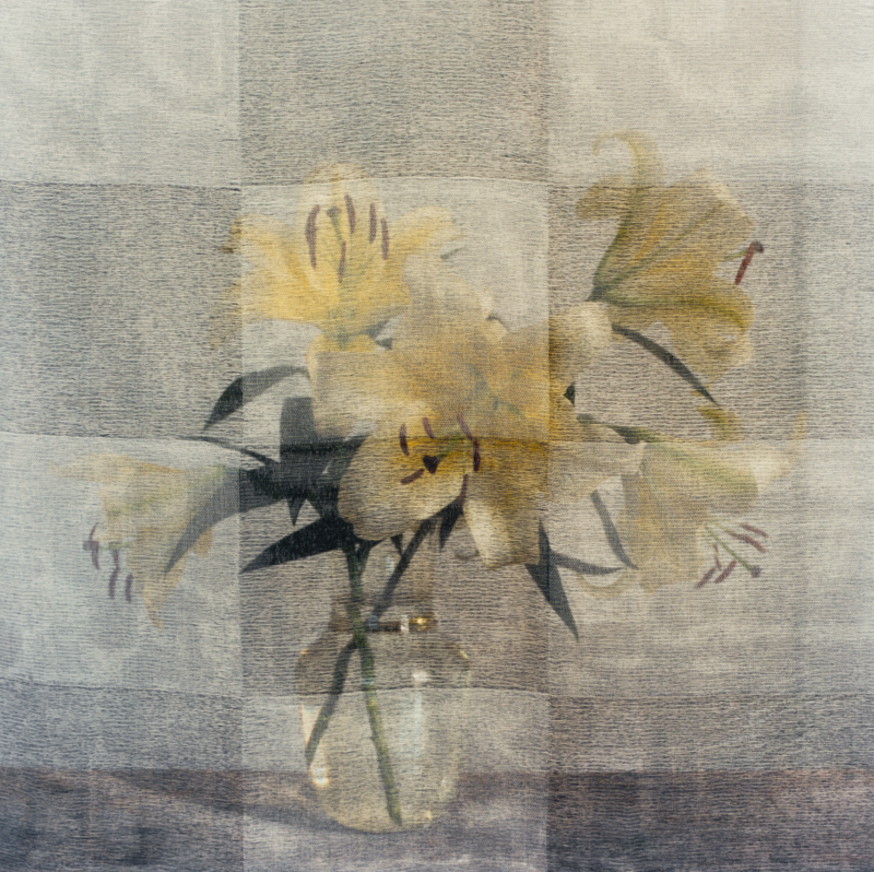 PETER C JONES - Checkered Lilies, No.1, 2008 - W -.jpg
