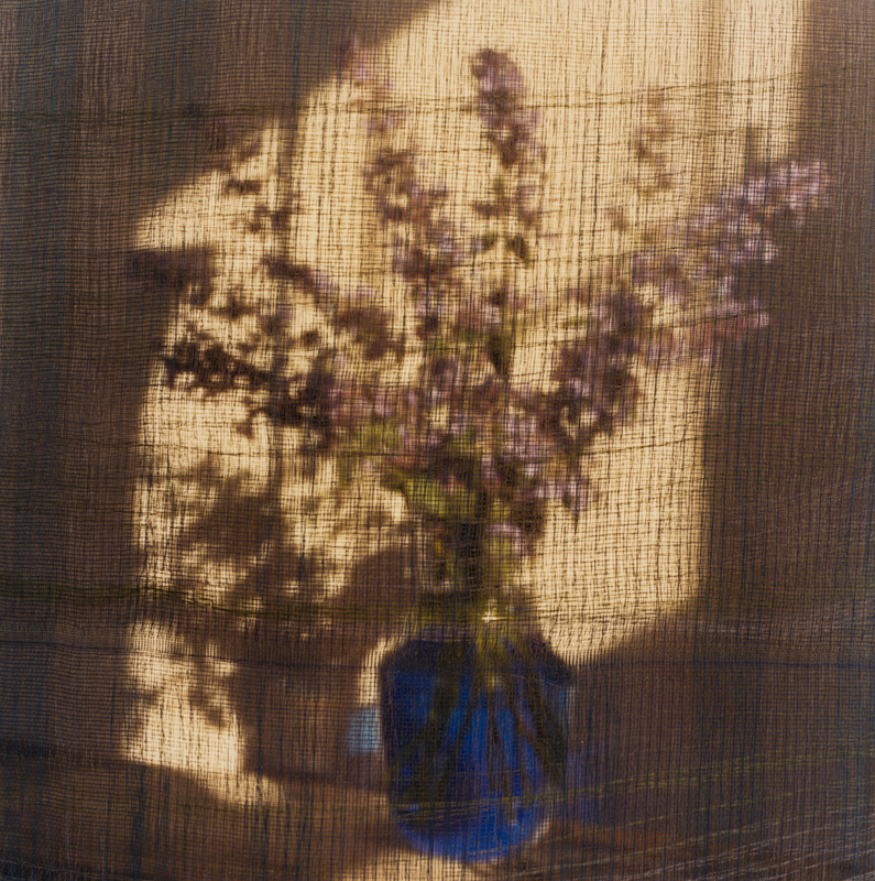 PETER C JONES - Nepeta in Blue, 2008 - W -.jpg