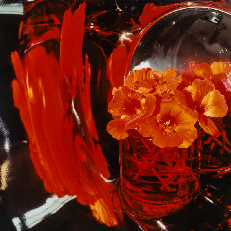 PETER C JONES - Sudden Splash of Red, 2006 - W -.jpg