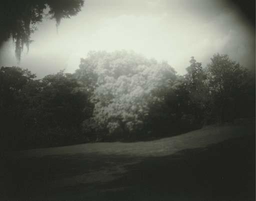 Untitled (Virginia), 1993