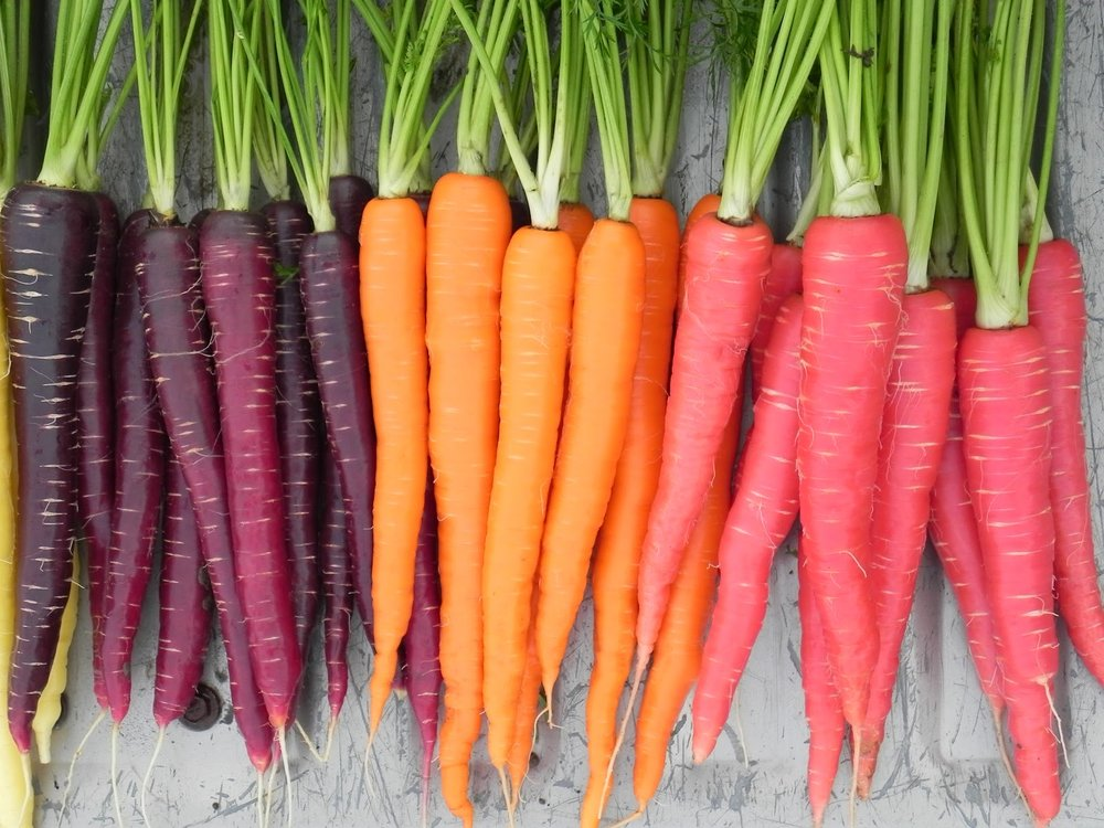 carrot-nutri-red-sugarsnax-purplesnax.jpg