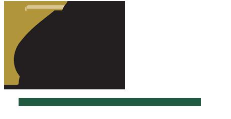 csf_logo.png