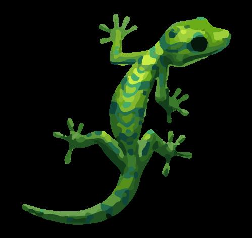 gekko.png