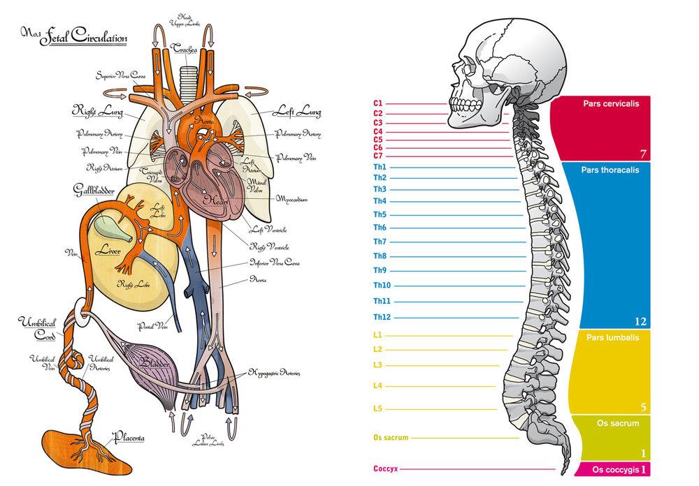 Michael-Vestner-Illustration-Editorial-6.jpg