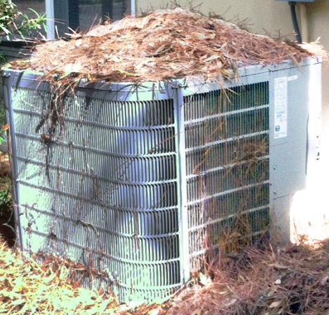 Pine Straw accumulation on an A/C unit.