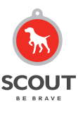 Scout Agency - Consumer/B2B & Health Care Agency