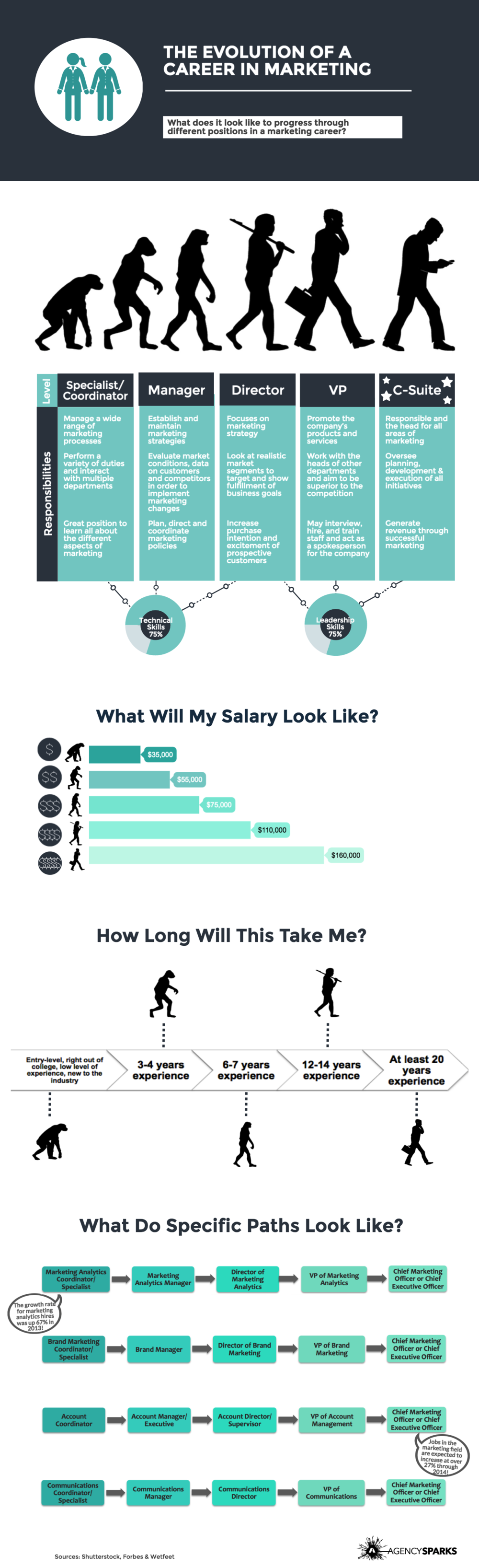 Marketing Career Path - Infographic  When entering the job market after graduation, many students are unaware of how they will progress through a career in marketing. The evolution of a marketing career generally involves 5 different position levels; coordinator/specialist, manager, director, VP, and C-Suite. More technical skills are required towards the beginning or your marketing career and more leadership skills are needed as you progress through your career path. Salaries will range from roughly $35,000 to $160,000. Generally, it will take around 20 years of experience to get to the C-Suite level. Learn more about responsibilities for each level, salaries, job length, and sample career paths above!