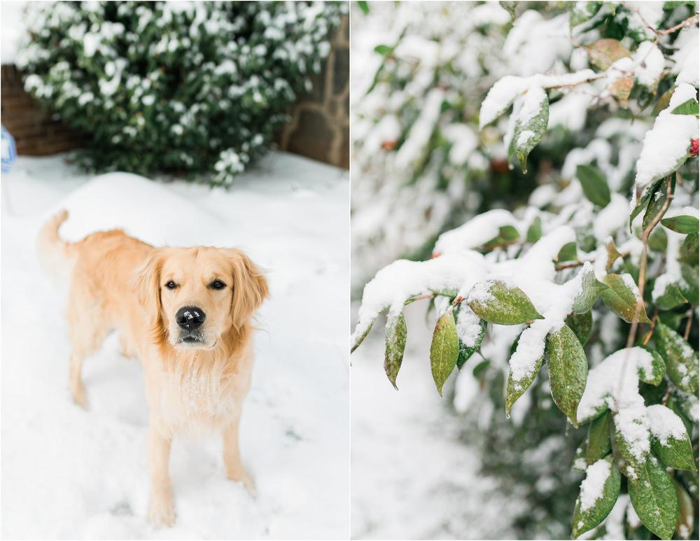 Jan 23 Snow1.jpg