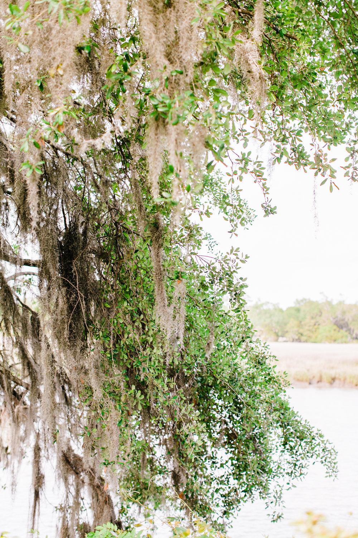 magnoliaplantationwedding-261.jpg