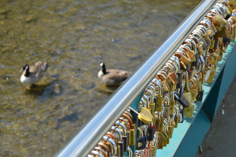 Just some of the Love-Locks on the bridge.