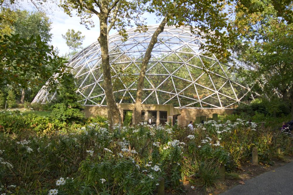 Queens Zoo 13 7019.jpg