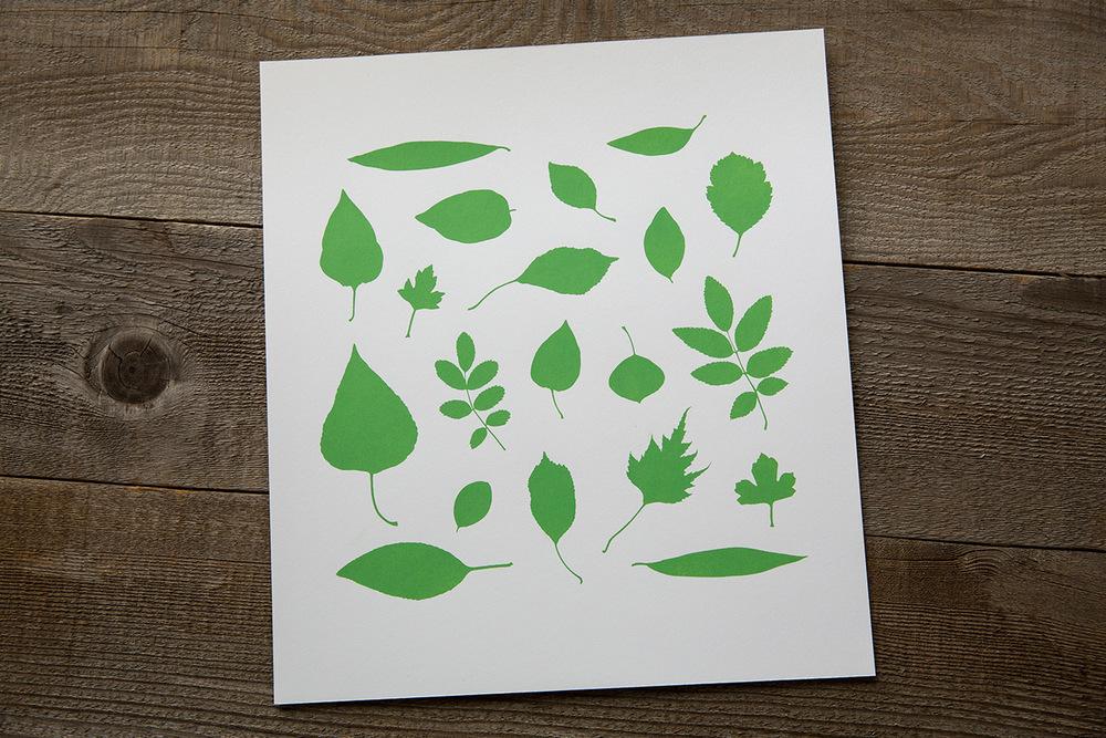 print | leaves