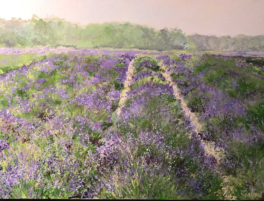 "Misty Dawn,Lavender Field East marion  oil 30"" x 40""          $2100"