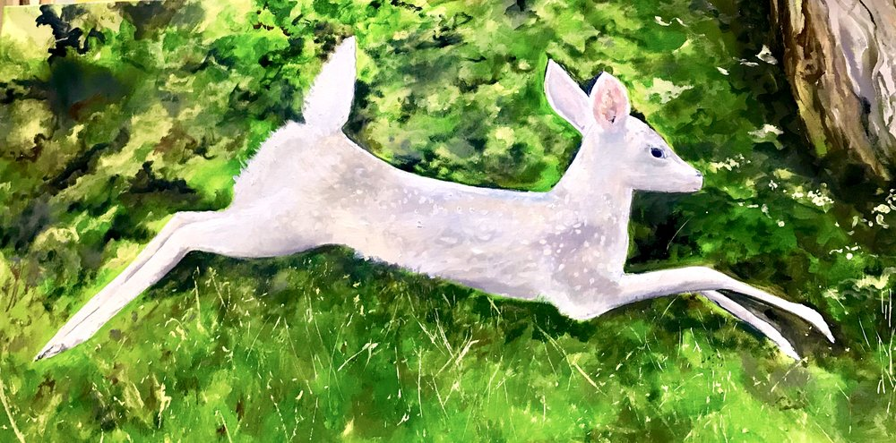 """White Fawn Leaping Oil 24"""" x 48"""" $2000"""