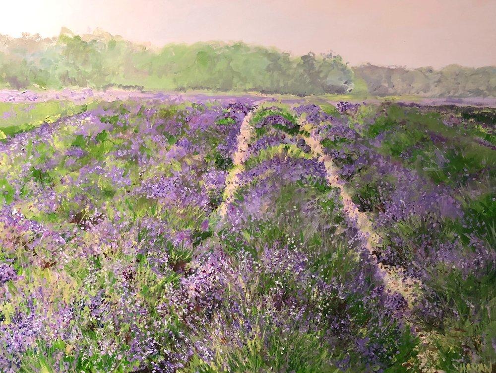 """Dawn,Lavender Field, E. Marion Oil 30"""" x 40"""" 2100"""