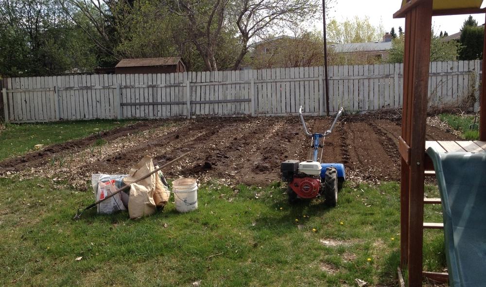 urban_garden_SPIN_Farming