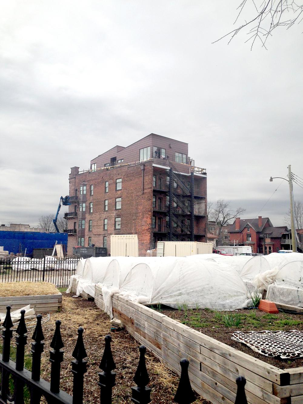 Renovering och odlingar i Detroit