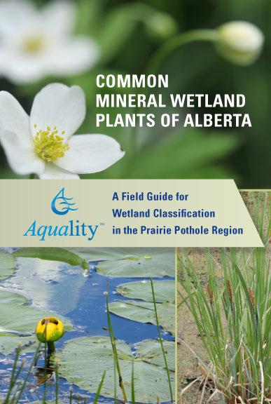 WetlandFieldGuide_cover.jpg