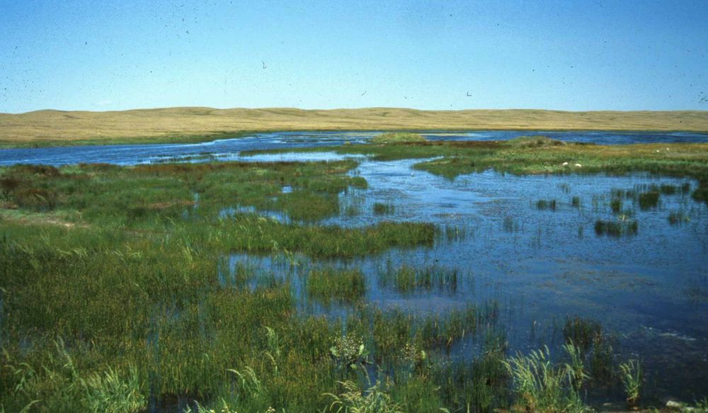 Canadian wetland classification system wetland policy for Soil zones of alberta