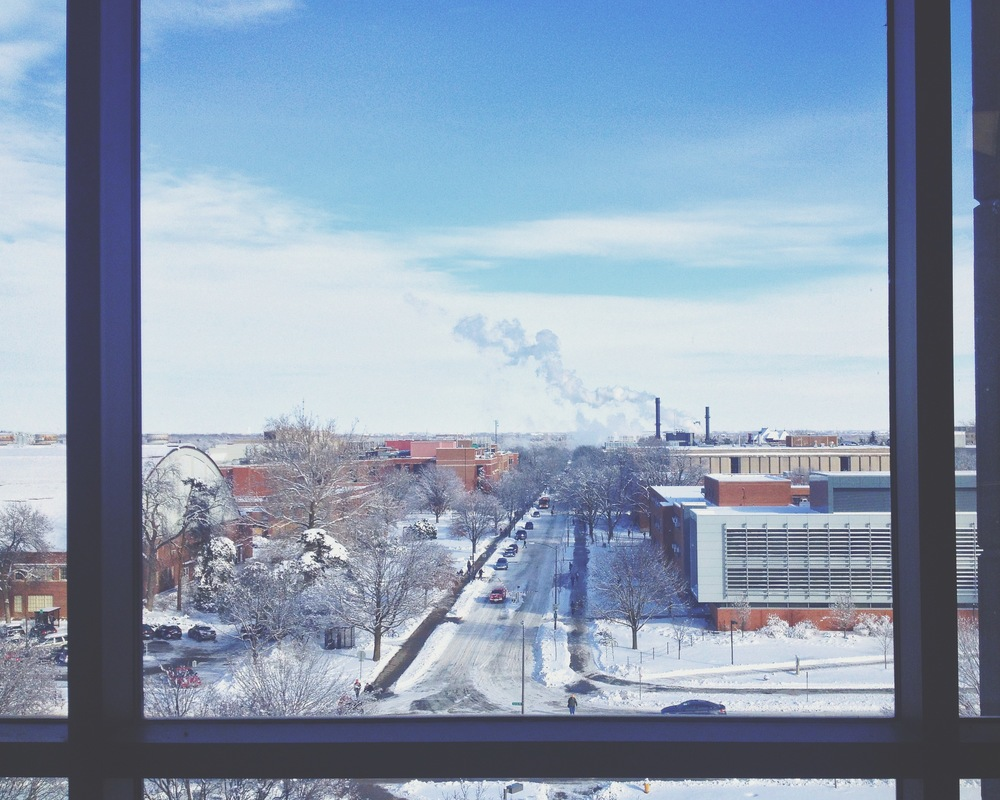 Iowa winters are beautiful, but they come with a bite. This is a view from the College of Designat Iowa State.