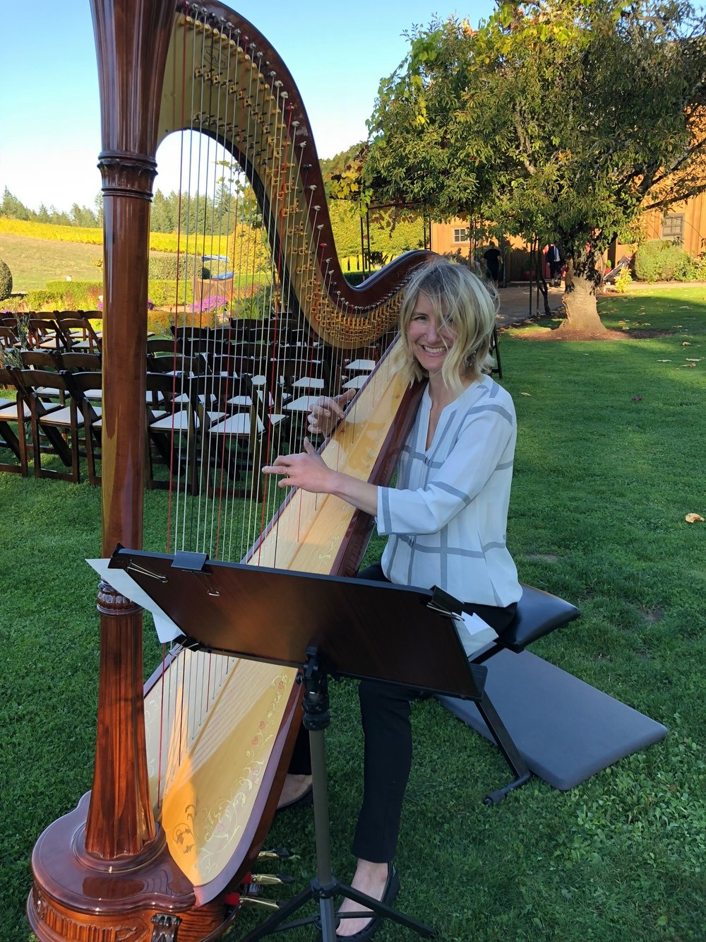 harp at Beacon .JPG