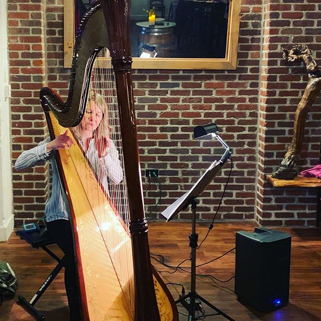 Valentine's Day filmed with music, delicious food and 🍷. #harpmusic #carltonoregon #rosewine #willamettevalley #valentinewine #