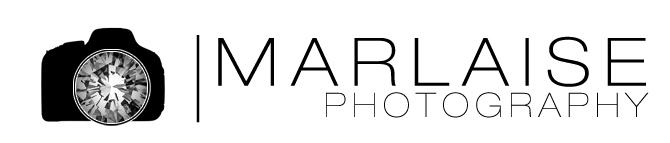 Marlaise_logo.jpg