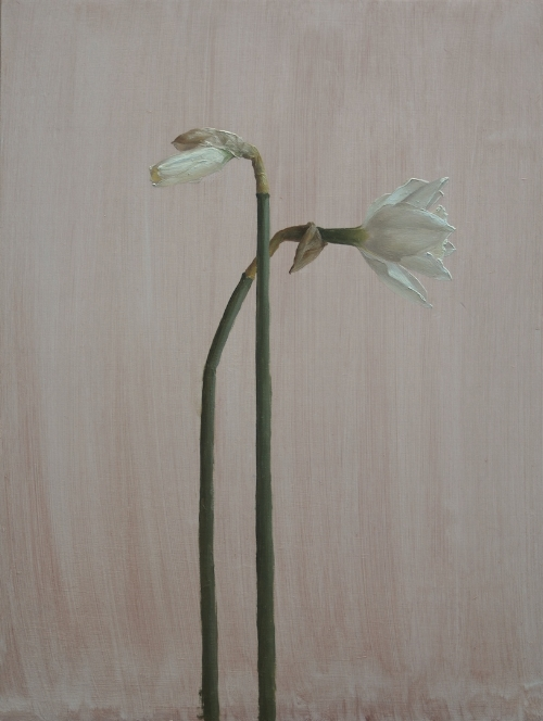 Katie Whipple   Narcissus, Narcissus  16 x 12 in oil on wood