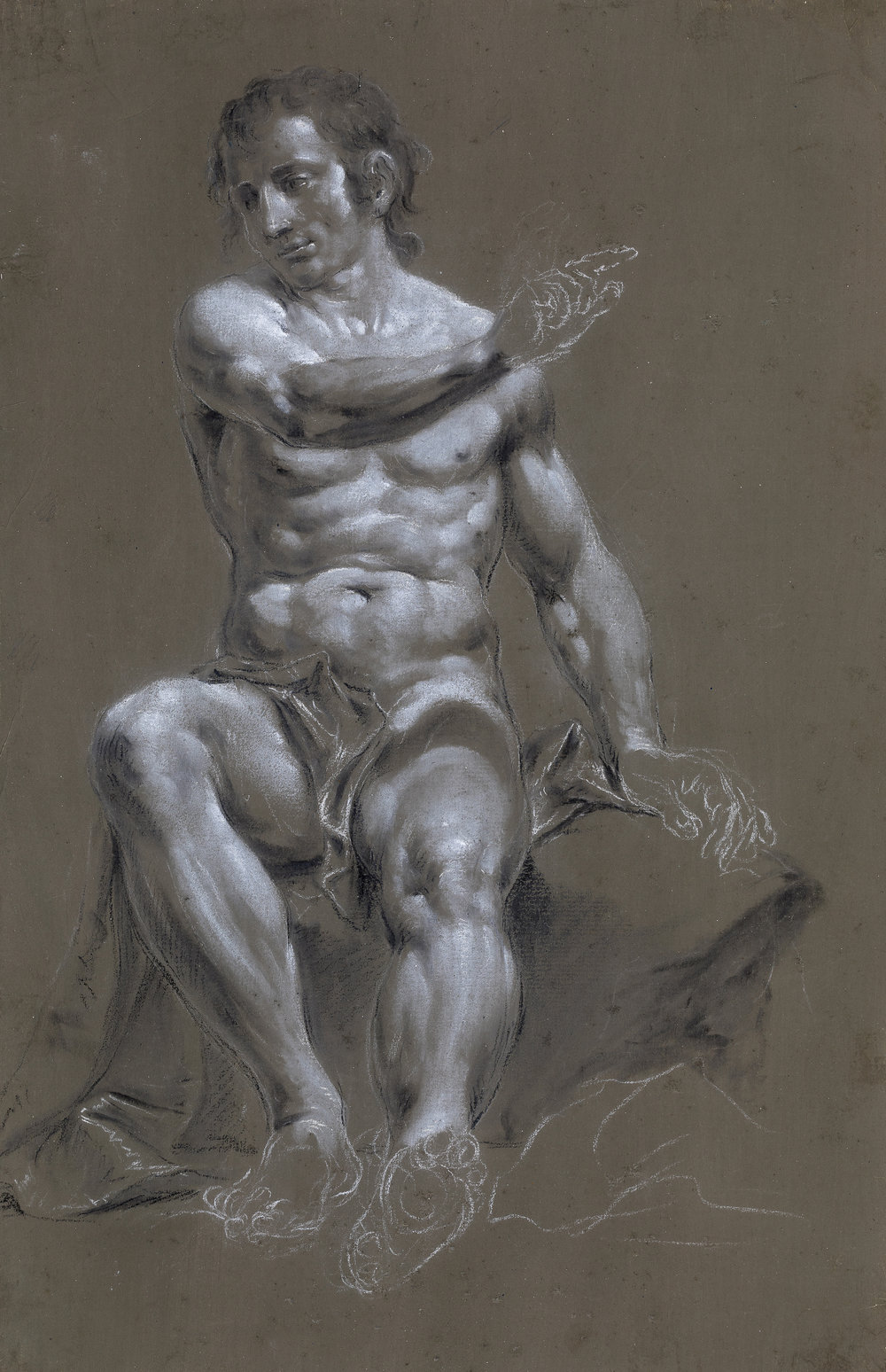 Francesco Monti  (b. 1685)  A Seated Man, His Right Arm Raised  16 15/16 x 11 in. black and white chalk, on grey-olive prepared paper