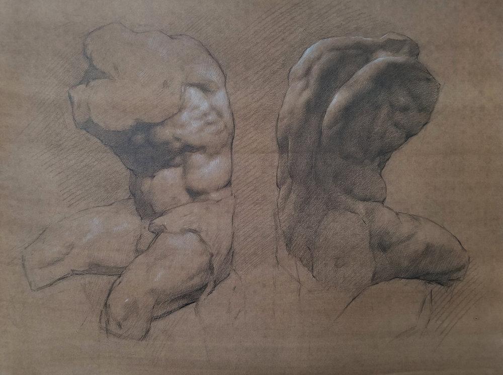Belvedere Torso study  by Jon Brogie 2018, graphite and white chalk on paper