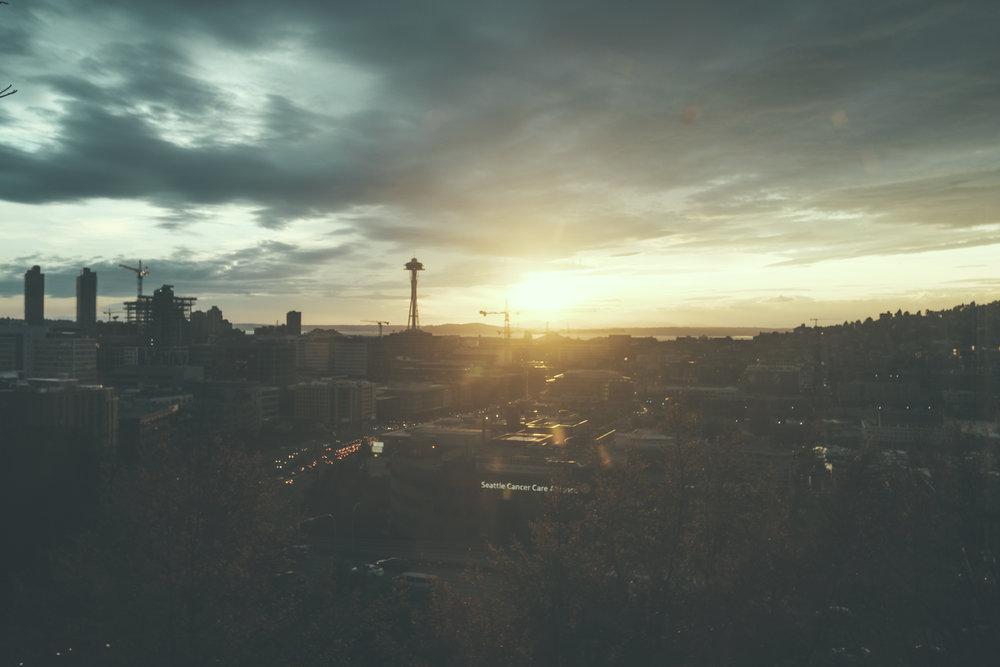 FIND_FOXY_photography-16.jpg
