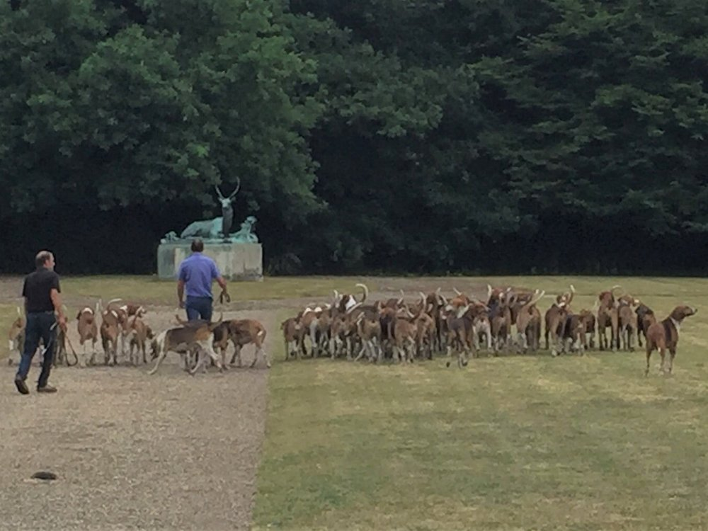 Château de Folembray Hunting with hounds