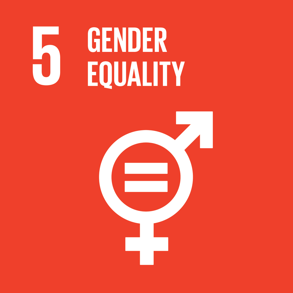 SDG 5 gender equality icon