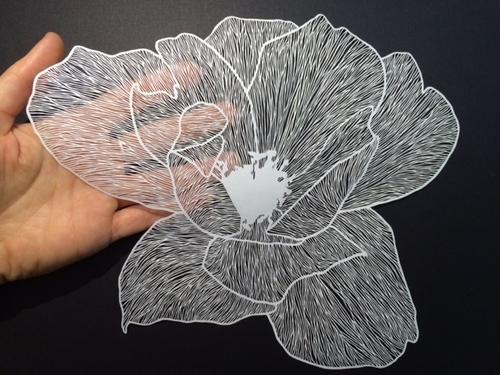 flower_maudewhite.jpg