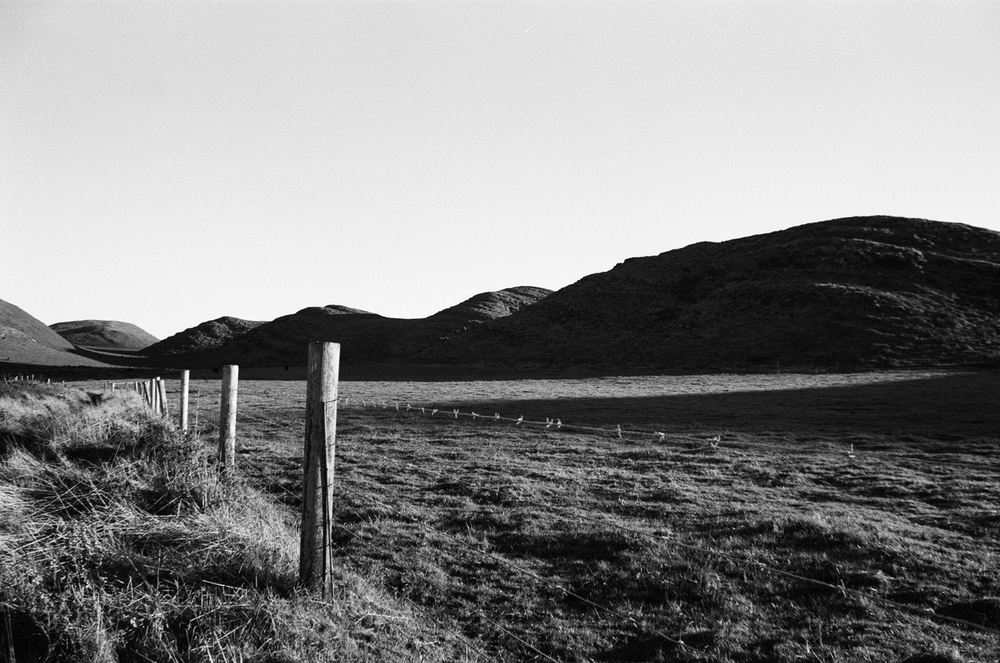 Point Reyes, 35mm