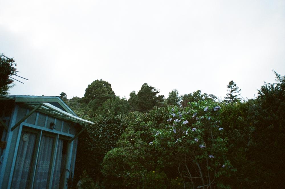 1972, 35mm