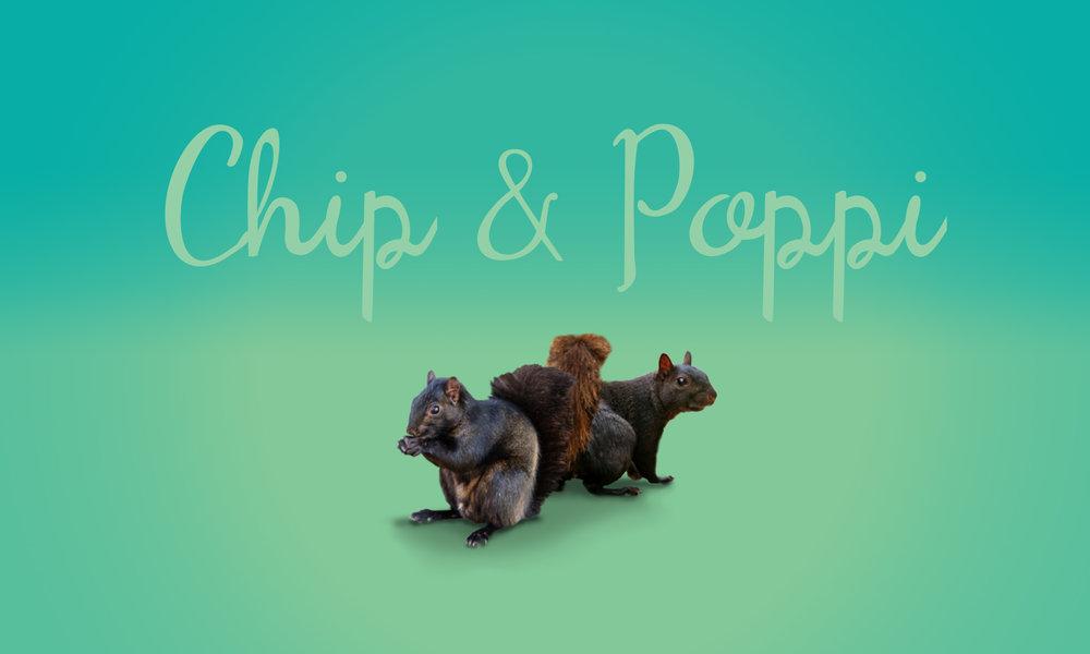 cpw_pep_chp_poppy.jpg