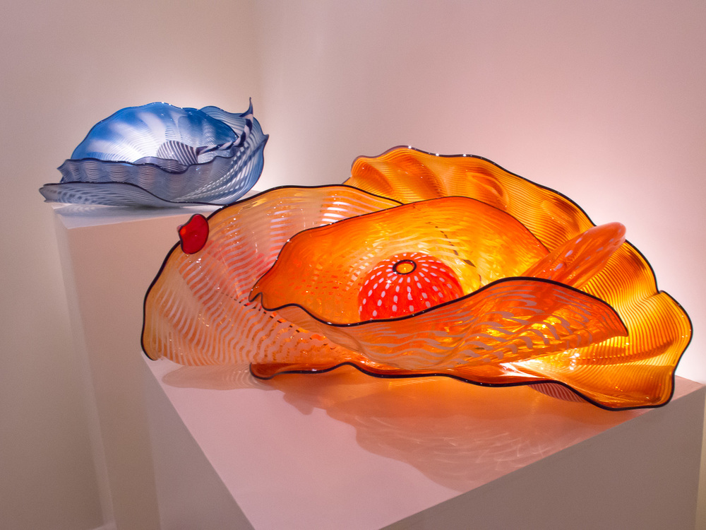 Chihuly corral forms on display