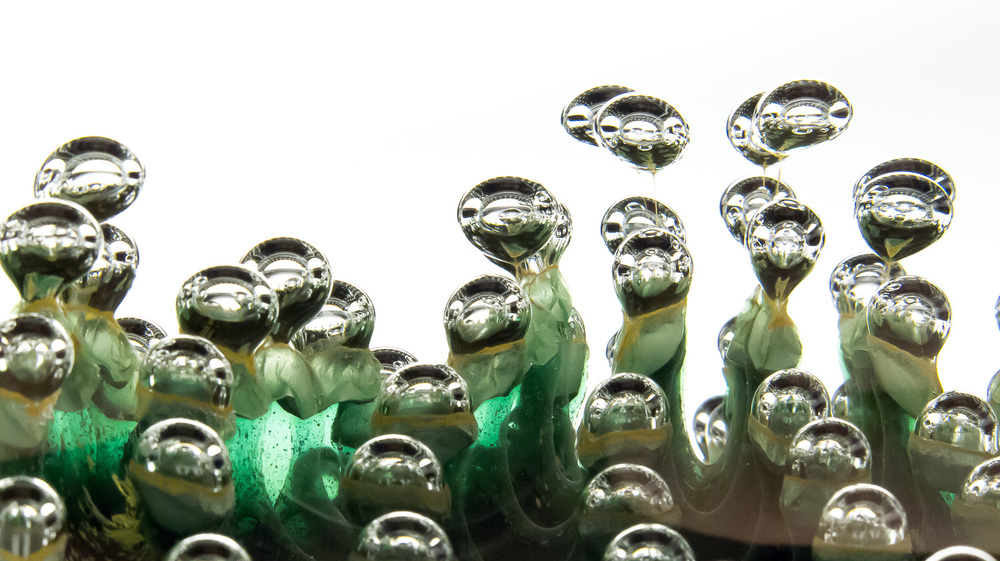 GreenPlanet_1.jpg