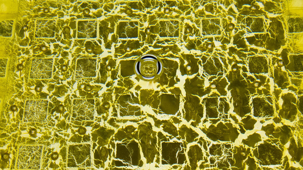 GoldFoilBlk_009_WEB.jpg