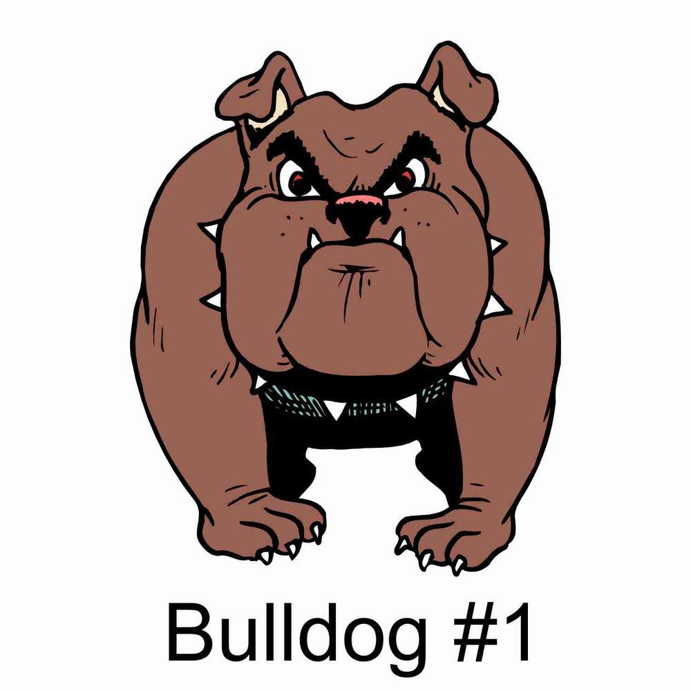 Bulldog #1.jpg
