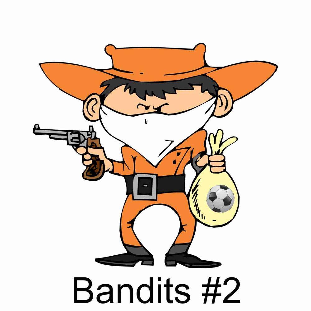 Bandit #2.jpg