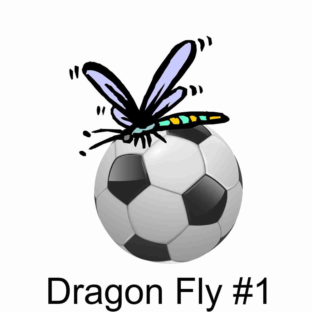 Dragon Fly #1.jpg