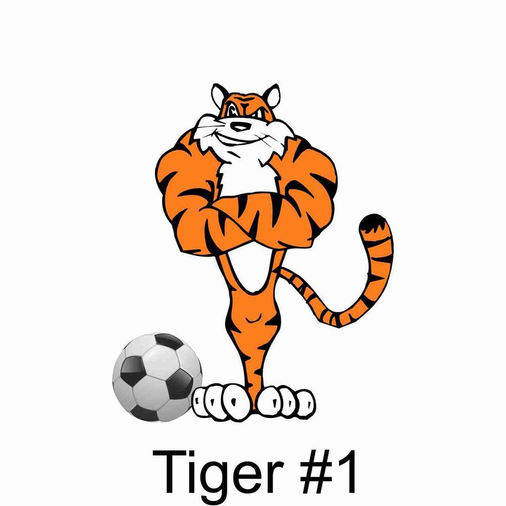 Tiger #1.jpg