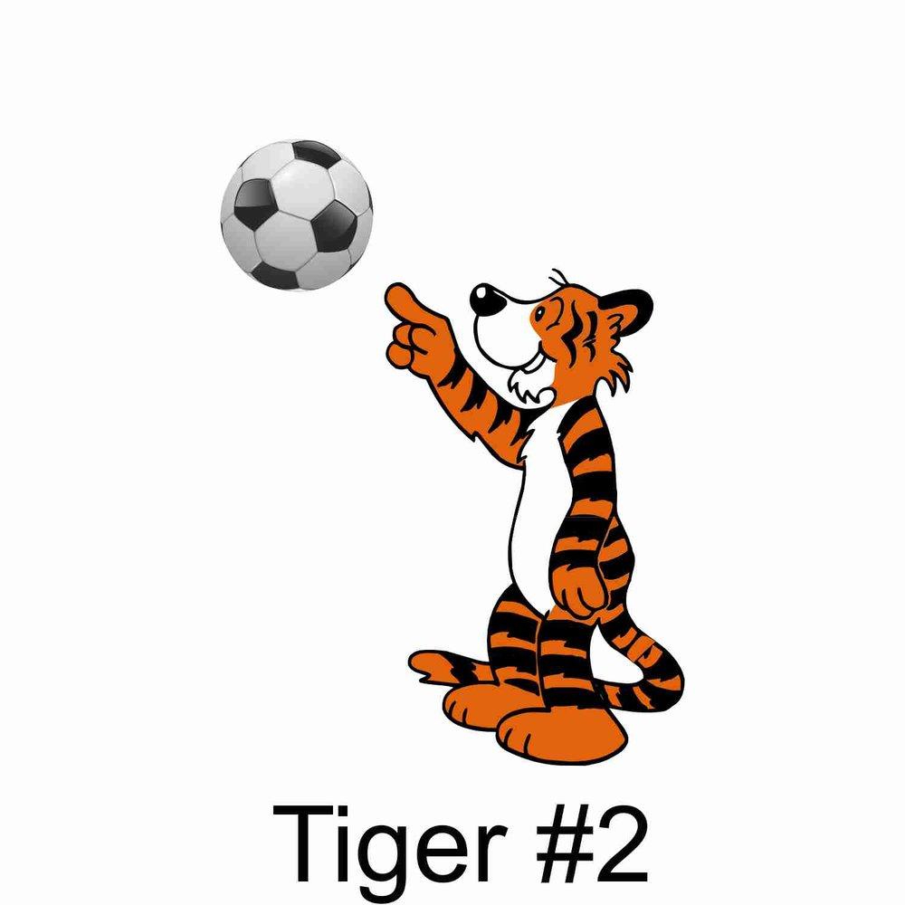 Tiger #2.jpg